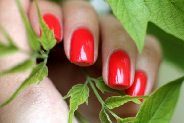 Биогель для ногтей: что это такое